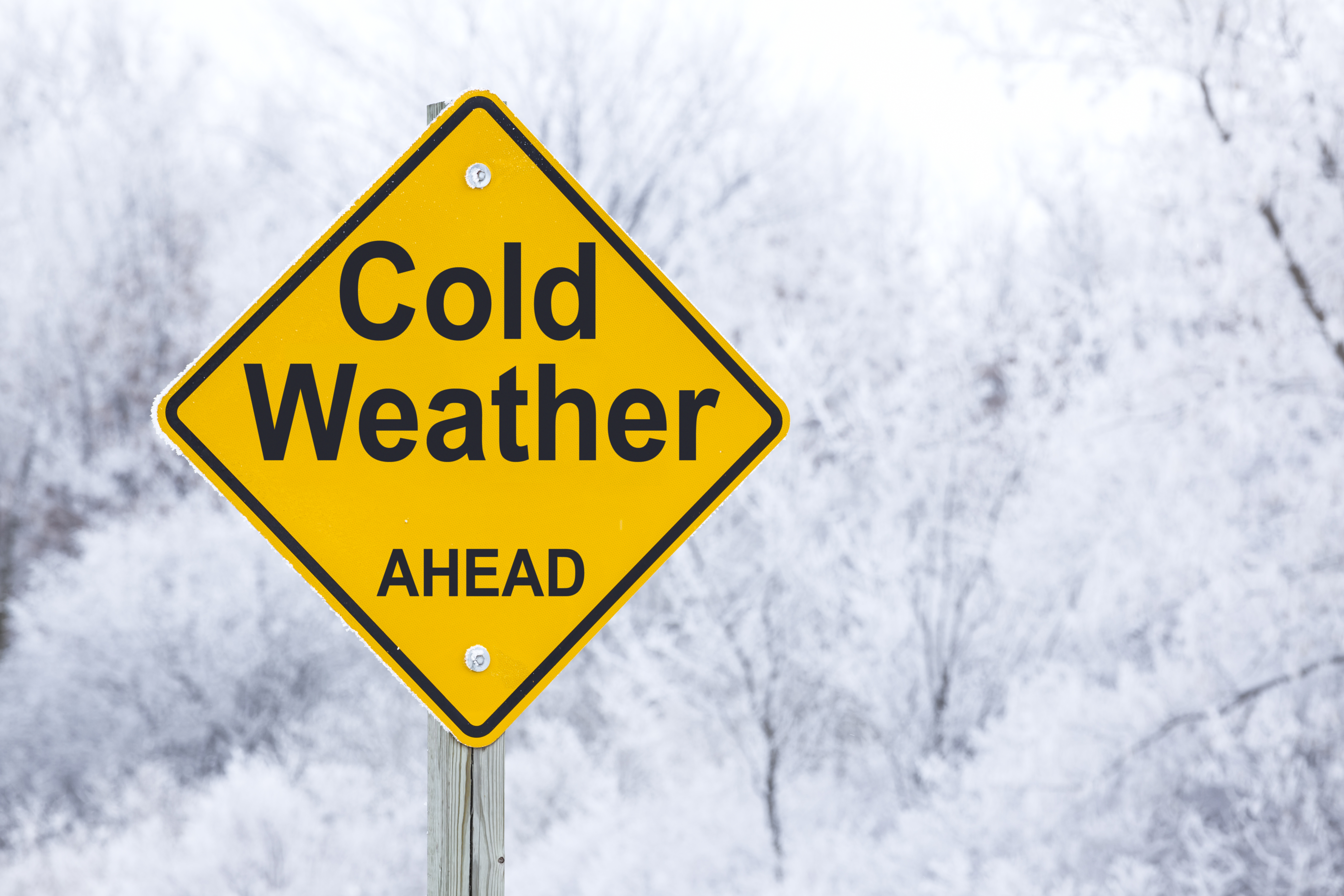 how they forecast a cold winter